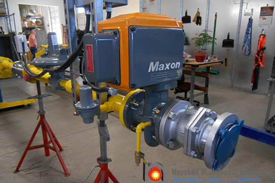 Gas Valve Assembly Maxon Component